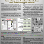 2010 SEA-PHAGES Symposium Faculty Poster